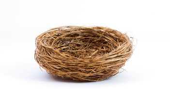 an empty nest