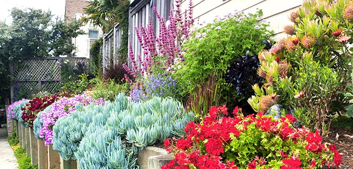 Garden Tutorial