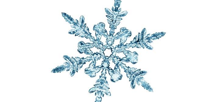 GEAR: COLD WEATHER ESSENTIALS WINTER/SPRING 2020