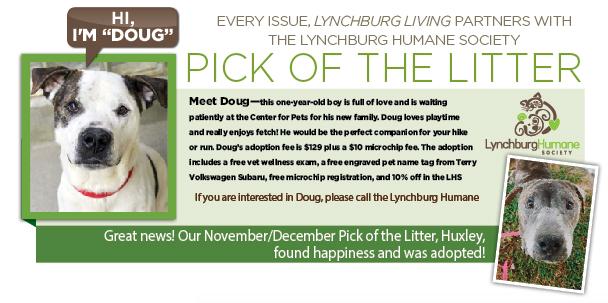 pick of the litter jan feb 2021