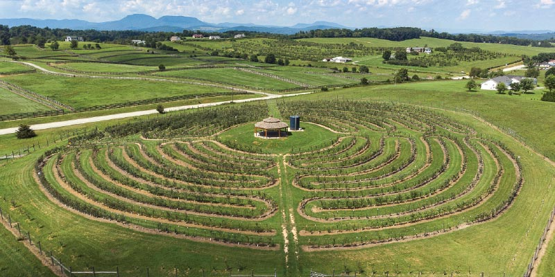 Labyrinth at Halcyon Days Cider Company